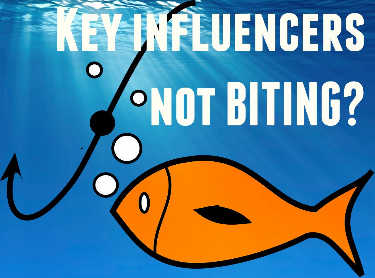 5 key influencer segments