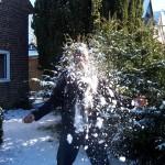 snowball effect marketing